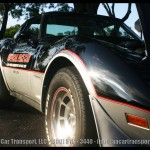 Davie-fl-car-show-1978-pace-car-2